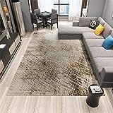 Xiaosua jugendzimmer grau Retro Teppich grau Fuzzy einfaches Muster haltbaren Teppich leicht zu reinigen jugendzimmer komplett Set 80X120CM waschbare teppiche 2ft 7.5''X3ft 11.2''
